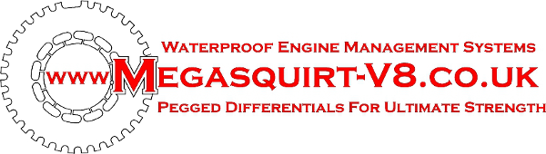 Megasquirt for V8 engines - What is Megasquirt